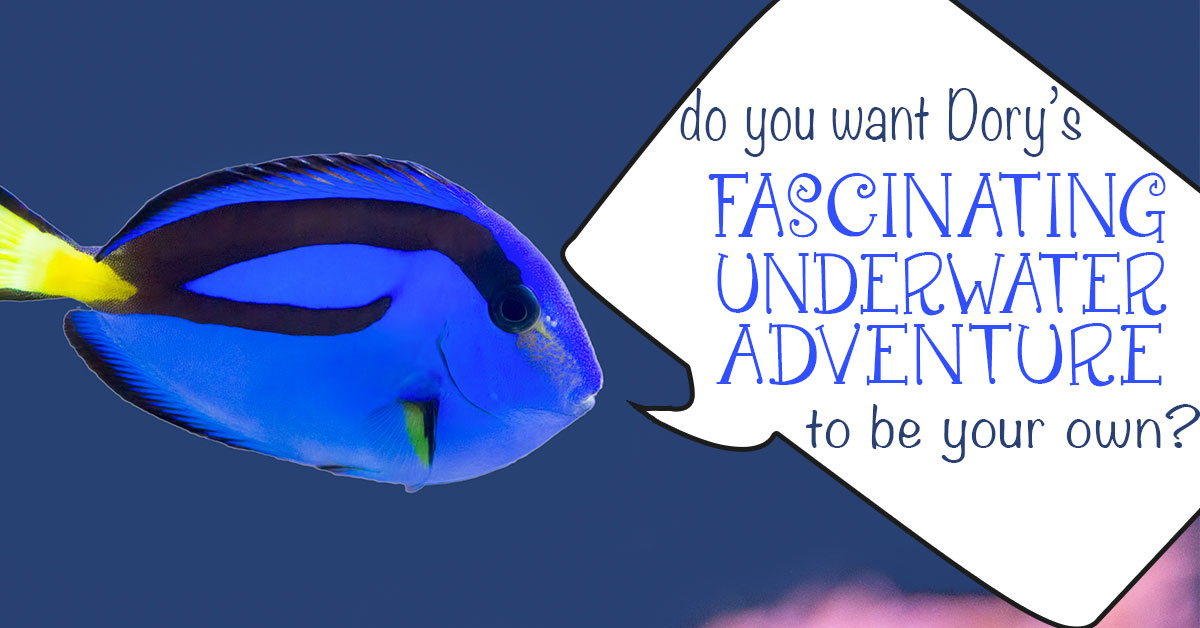 Do You Want Dory's Fascinating Underwater World to be Your Own