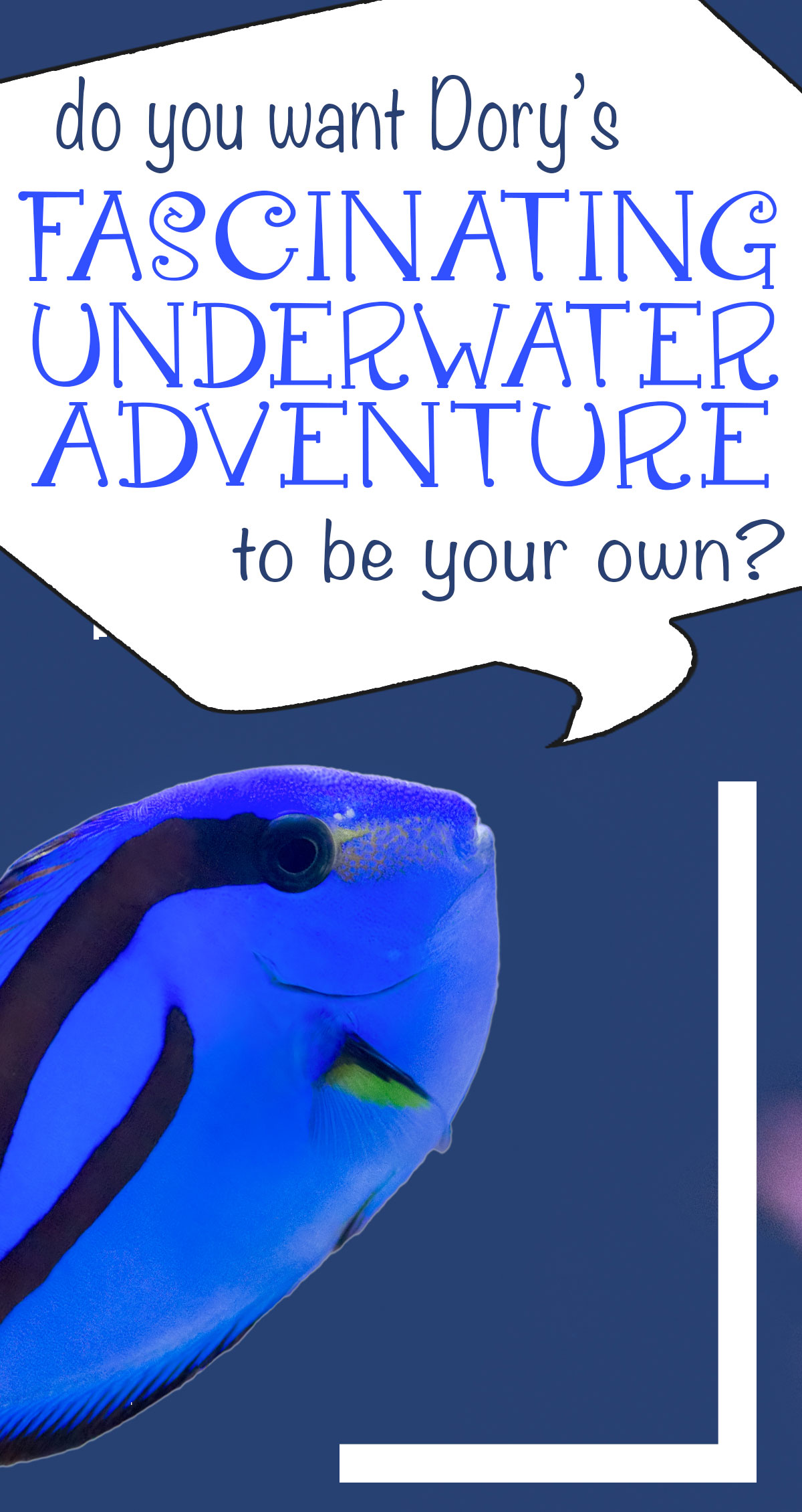 Do You Want Dory's Fascinating Underwater World to be Your Own Pin