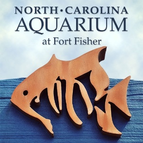 North Carolina Aquarium Fort Fisher | Sunset Vacations