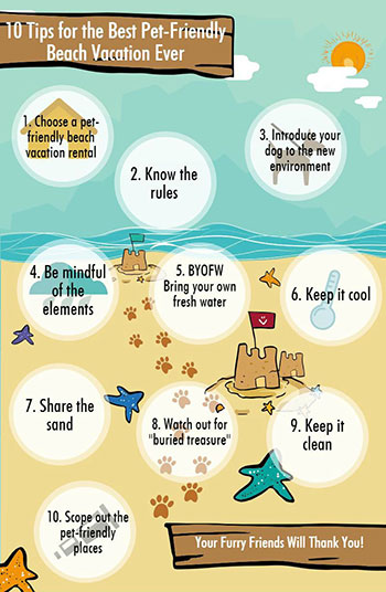 Infographics 10 Tips for the Best Pet-Friendly Beach Vacation Ever